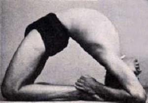 blog  arthur kilmurray  explorations in yoga the re